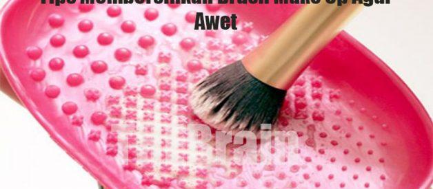Tips Membersihkan Brush Make Up Agar Awet