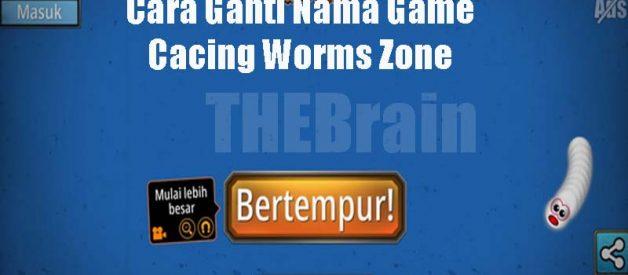 Cara Ganti Nama Game Cacing Worms Zone