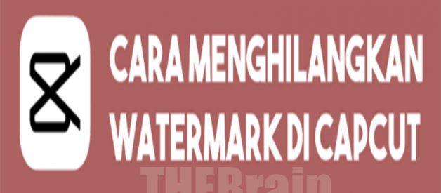 Cara Hilangkan Watermark Di Aplikasi Capcut, Mudah!
