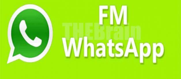 Cara Download FMWhatsApp Apk Mod