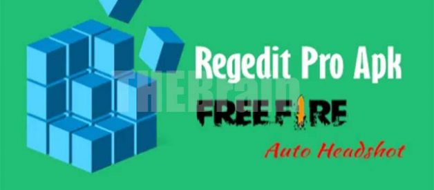Cara Download Regedit Pro FF