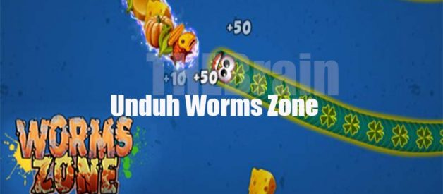 Unduh Worms Zone Mod Apk Full Unlocked