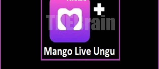 Cara Dapatkan Mango Live Mod Apk Ungu Terbaru