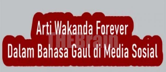 Penjelasan Arti Wakanda Forever Bahasa Gaul Di Media Sosial