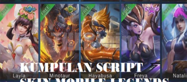 Cara Unduh Script Skin Hero Mobile Legends
