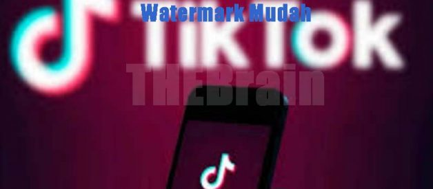 Cara Simpan Video Tiktok No Watermark Mudah