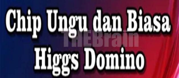 Penjelasan Chip Ungu Dan Biasa Game Higgs Domino