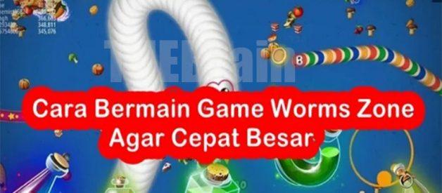 Kiat Bermain Seru Game Worms Zone Biar Cepat Gendut!