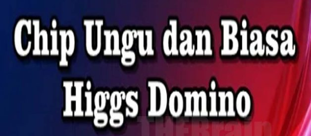 Penjelasan Apa Itu Chip Ungu Dan Biasa Higgs Domino