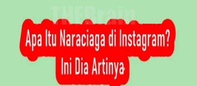 Penjelasan Arti Bahasa Gaul Naraciaga Di Instagram