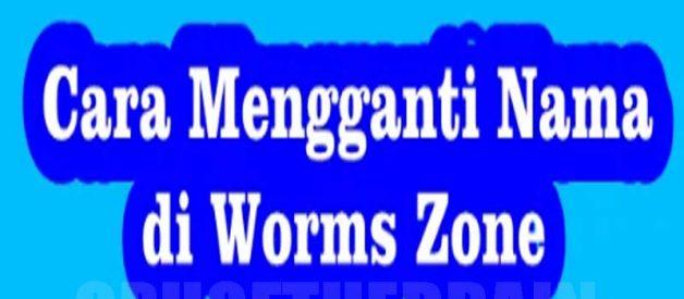 Cara Merubah Nama Game Cacing Worms Zone