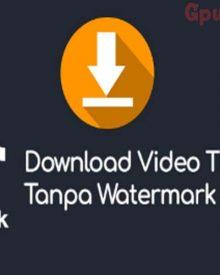 Begini Cara Download Video Tiktok Tanpa Watermark