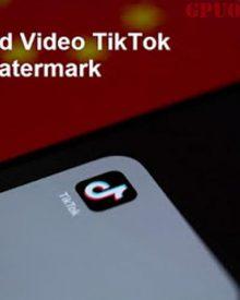 Cara Download Video Tiktok Tanpa Watermark, Cek Disini