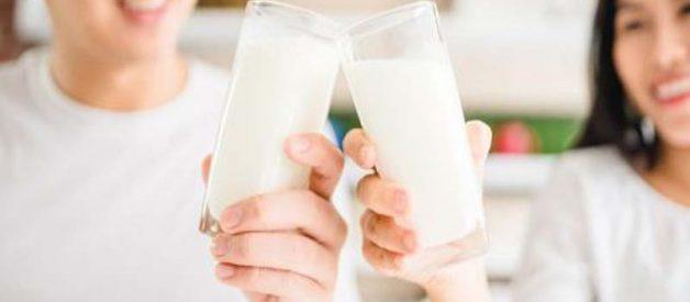Rekomendasi Merk Susu Terbaik Untuk Kesehatan Tulang