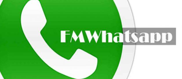 Download FMWhatsApp Apk Terbaru 2021